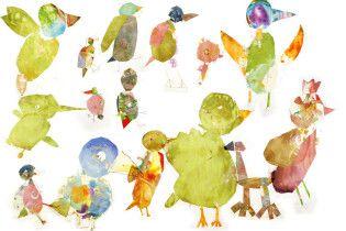 1st grade birds