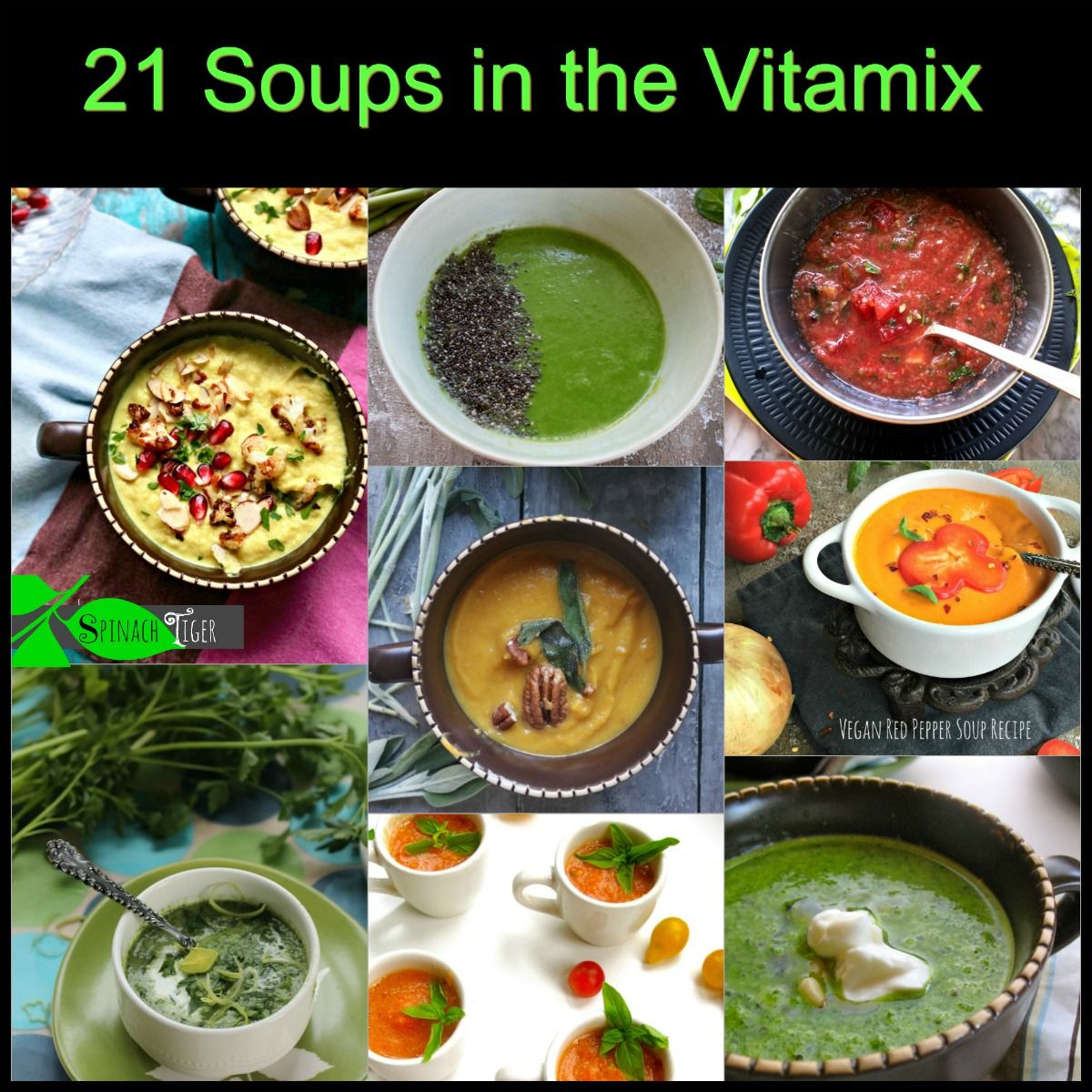 Vitamix Soup Recipes Made In Minutes Spinach Tiger In 2020 Soup Recipes Vitamix Soup Paleo Recipes