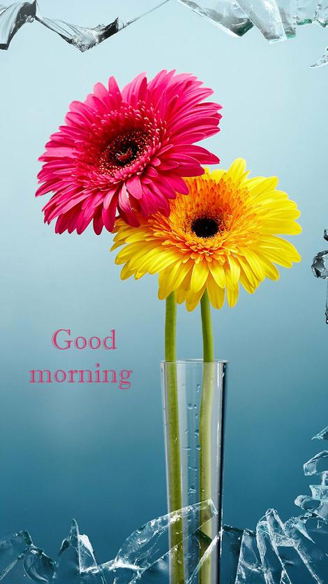 Good Morning greetings Good morning wallpaper, Good