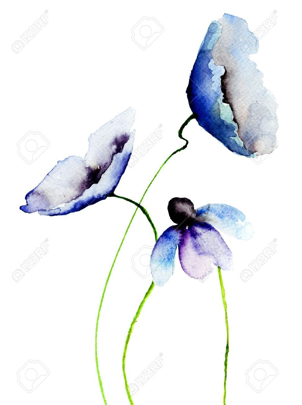 watercolor painting: Beautiful Blue flowers, Watercolor ...