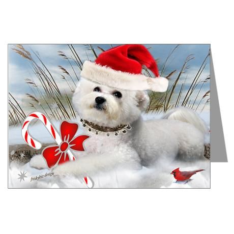 Bichon Frise Christmas on the beach greeting cards. Mon
