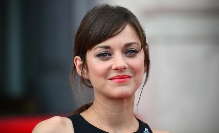 Marion Cotillard Is One Of The Very Famous And Most Trending Personality Now A Days In Different Social Medias And On In Marion Cotillard Marion French Actress