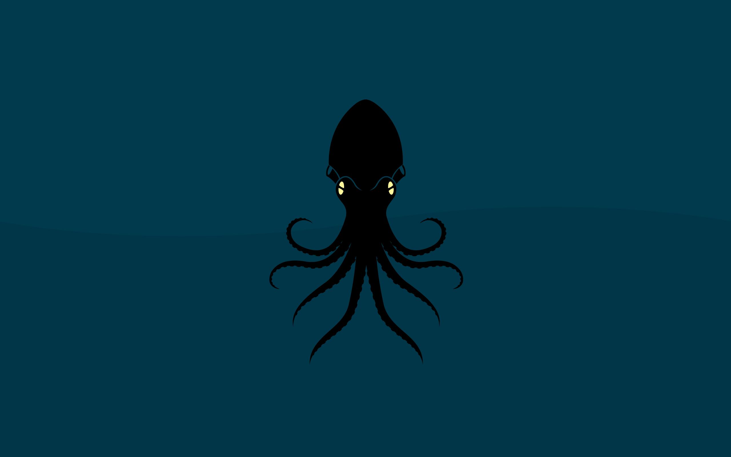 Octopus 2560x1600 Minimalist desktop wallpaper, Minimal
