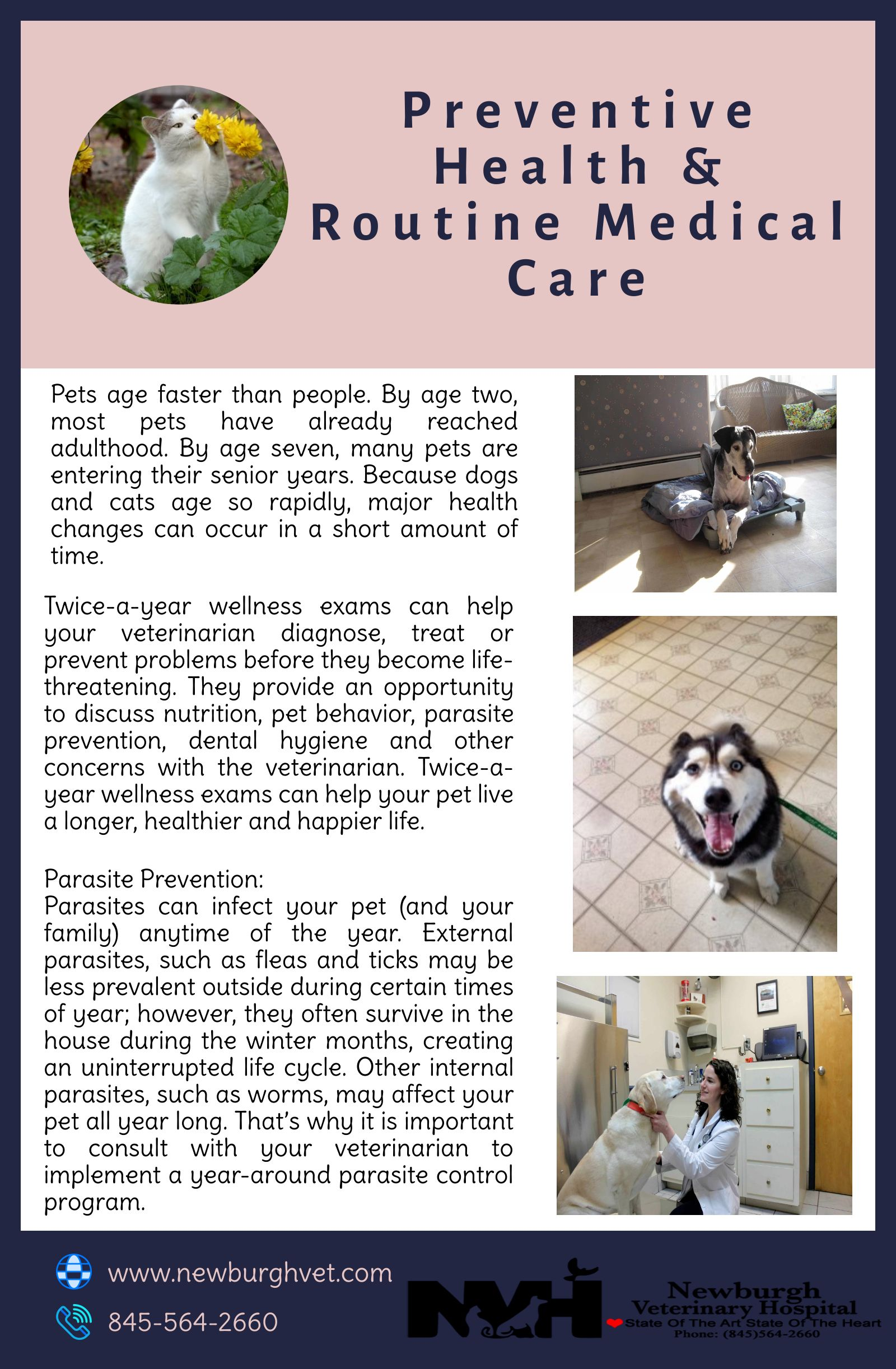 People Love Their Pets And They Are Very Concerned About Their Well Being Pet Owners Should Know Preventive Health Pet Vet Preventative Health Animal Hospital