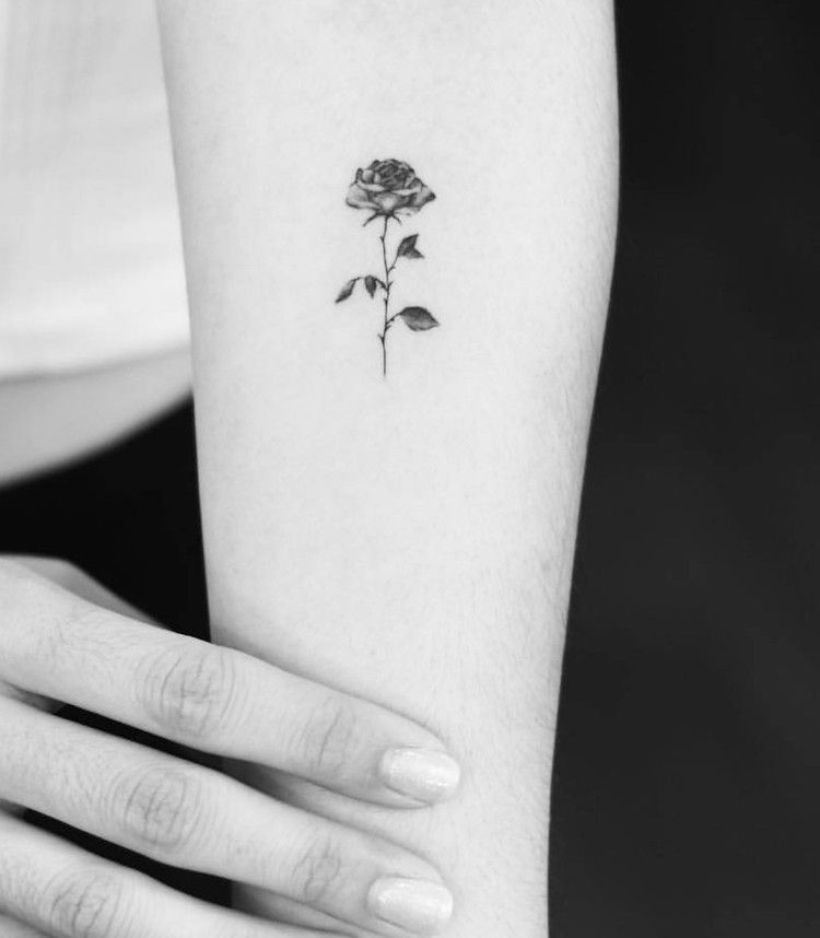tatouage,rose,discret,avant,bras,femme