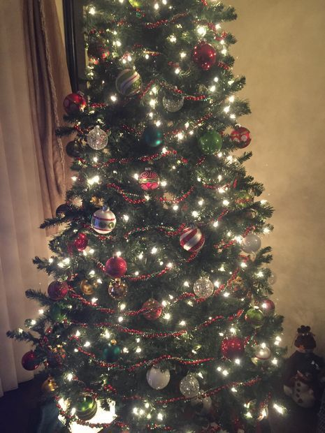 13 Unusual Uses For Canada Dry Ginger Ale Dry Ginger Ginger Ale Christmas Tree Preservative