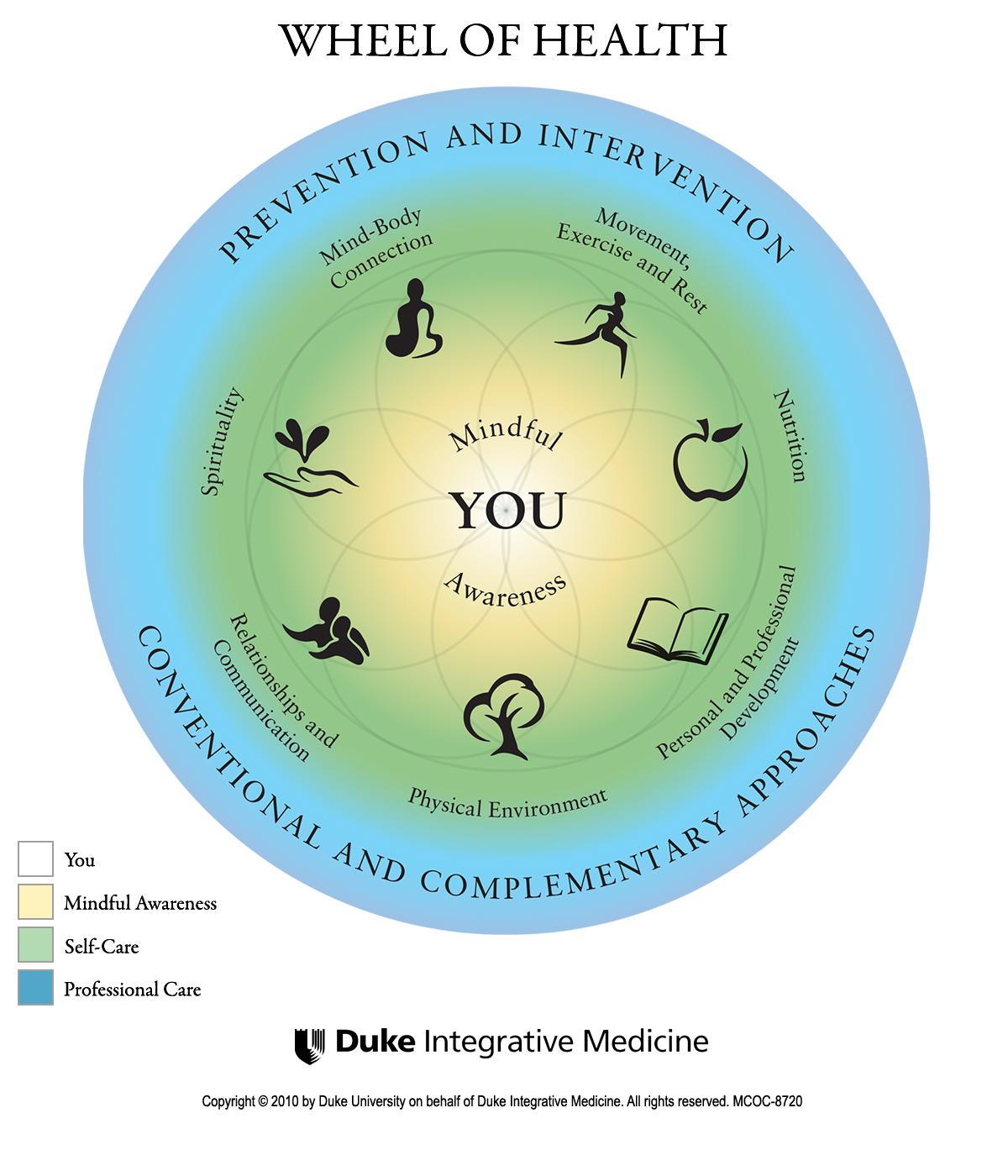 The Wheel Of Health Selfcare Ygyclub Healthylifestylefamily Integrative Medicine Integrative Health Integrative
