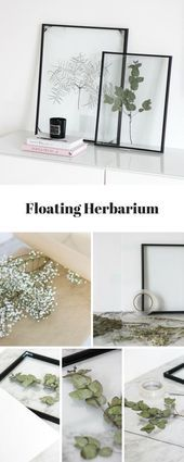 DIY Floating Frame Herbarium  this is how you create the floating frame  decor DIY Floating Frame Herbarium  this is how you create the floating frame  decor