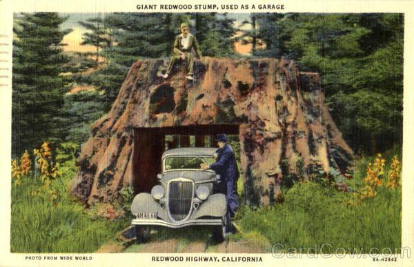 Giant Redwood Stump Used As Garage Redwood Highway California
