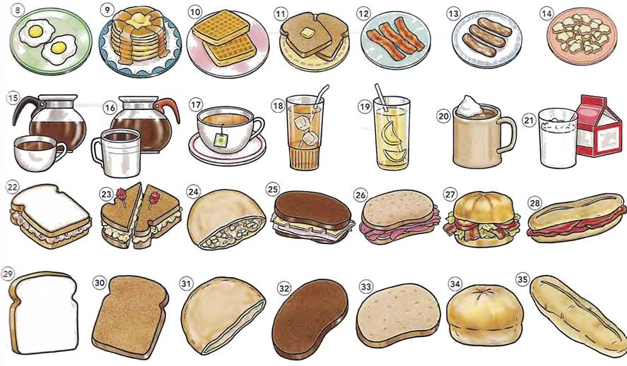 Food And Drink: Coffee Shop - Cafe And Sandwiches Vocabulary PDF