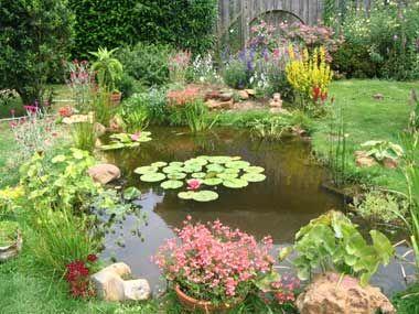 Passion Bassin Les Exemples De Realisation De Bassins Jardins Aquatiques Amenagement Jardin Bassin Bassin De Jardin Et Jardin D Eau