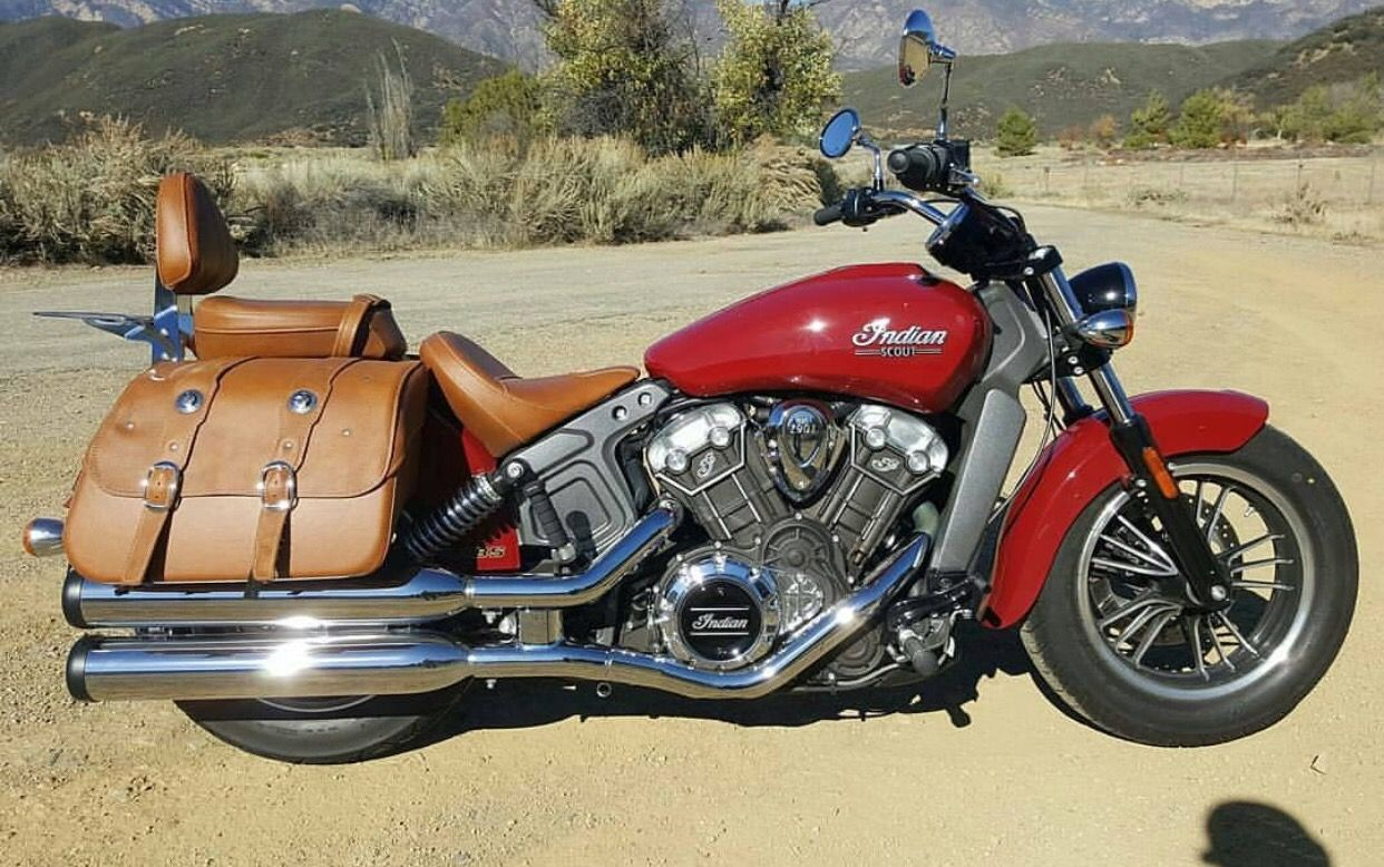 2016 Indian Scout With Saddle Bags Indian Scout Indian Motorcycle Indian Motorcycle Scout [ 778 x 1242 Pixel ]