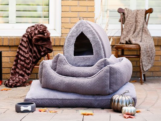 Bailey Bella Cable Knit Bed Collection Pet Store Food Animals