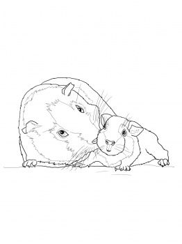 austin powers coloring pages - photo#41