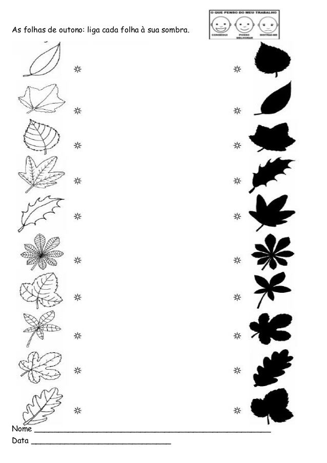 As folhas de outono: liga cada folha à sua sombra. Nome _________________________________________________ Data ___________...