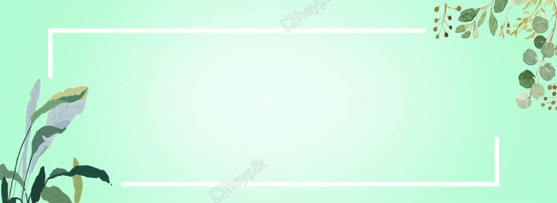 Mint Green Fresh Elegant Background