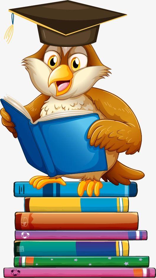 Dr Vector Cartoon Owl | Owl cartoon, Owl png, Owl vector