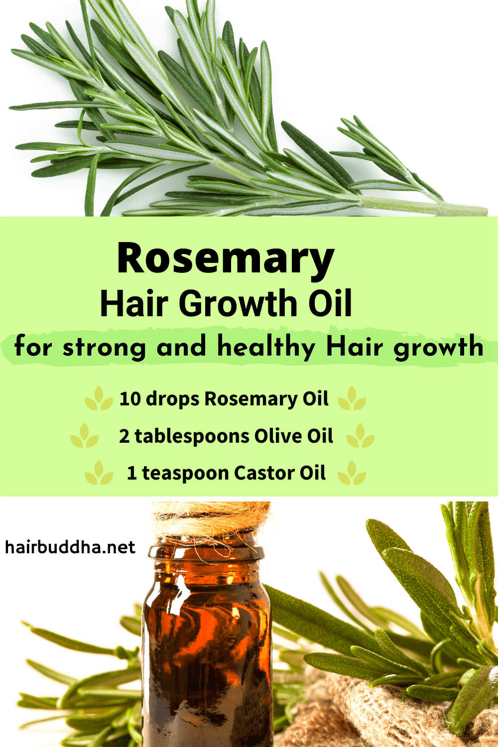 Why Use Rosemary Oil for Hair Growth (Helps with Androgenic Alopecia )