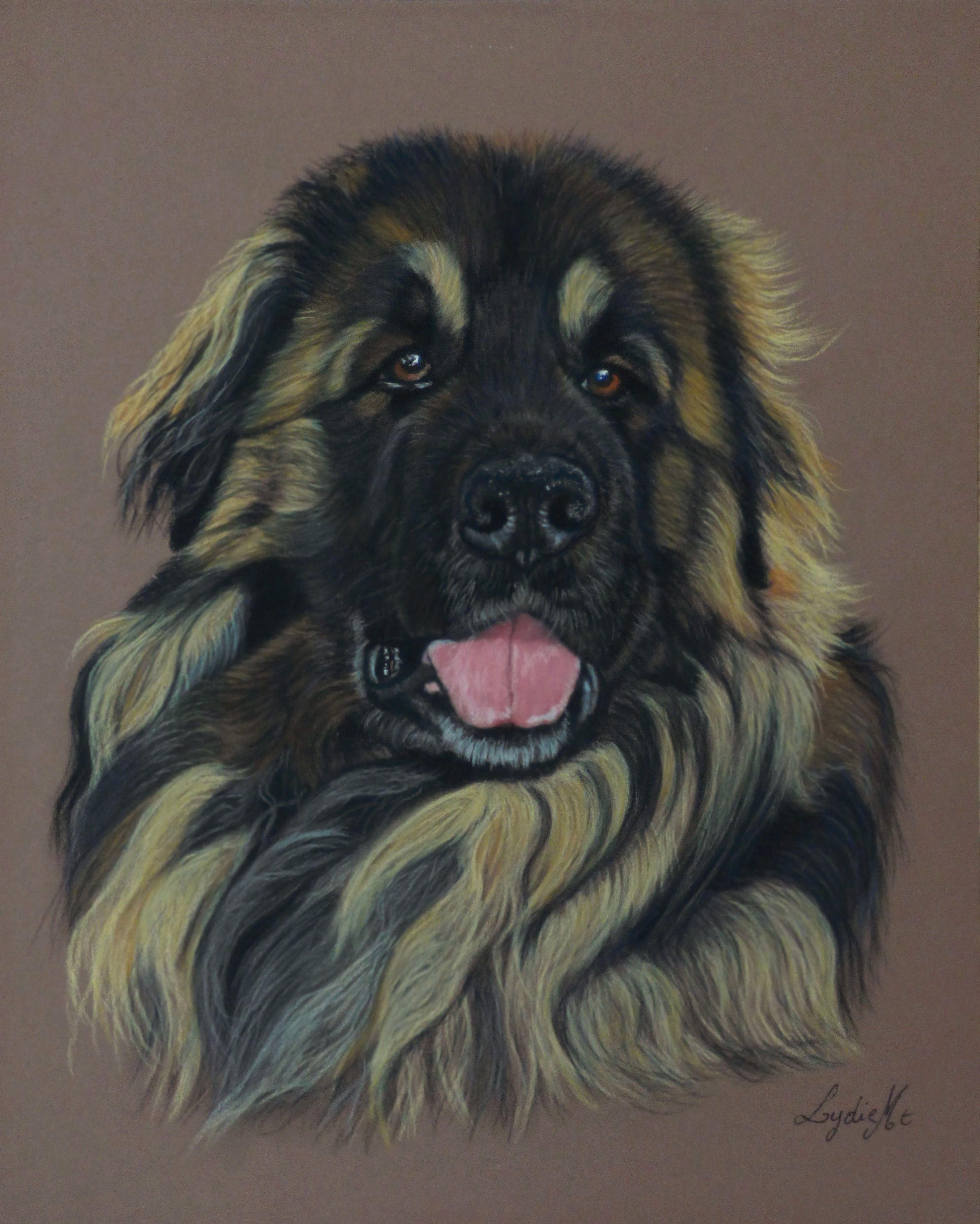 Léonberg aux pastels secs #chien #pastel #leonberg#chien #portrait ...