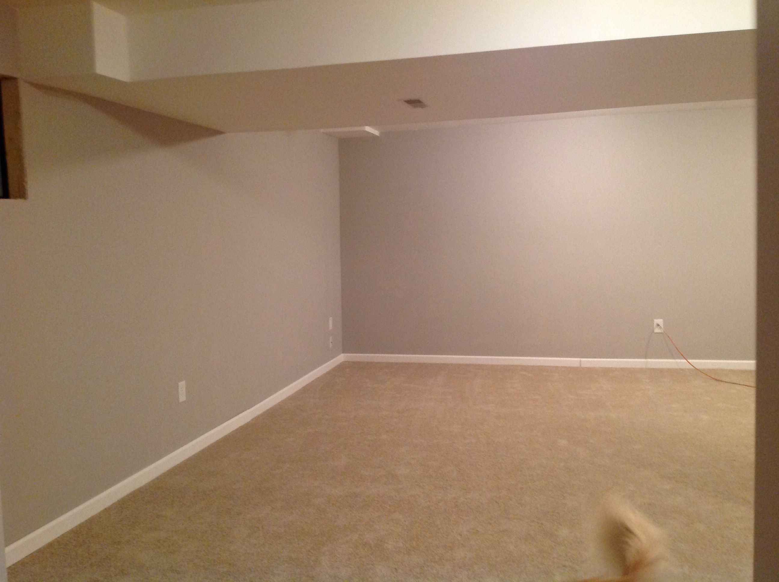 Grey goose Olympic paint from lowes paint Pinterest