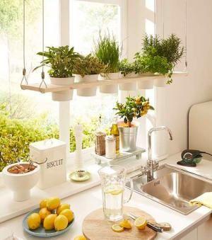 10 id es pour placer des herbes aromatiques dans la. Black Bedroom Furniture Sets. Home Design Ideas