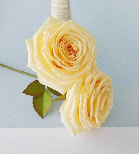 Crepe rose Long stem roses Crepe paper decor Crepe paper roses | Etsy #crepepaperroses Crepe rose Long stem roses Crepe paper decor Crepe paper roses | Etsy #crepepaperroses Crepe rose Long stem roses Crepe paper decor Crepe paper roses | Etsy #crepepaperroses Crepe rose Long stem roses Crepe paper decor Crepe paper roses | Etsy #crepepaperroses
