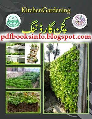 Basic electronics books in urdu pdf