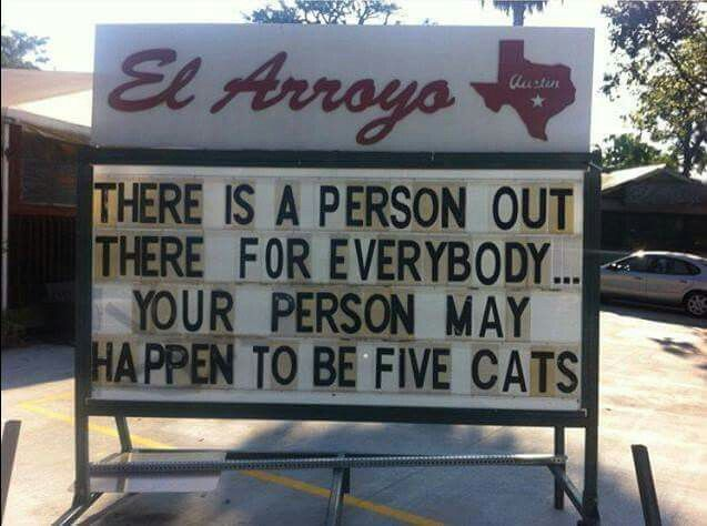 Pin By Karen Lira On FUNNY CATS Pinterest Humor And Funny Stuff - The internet cant get enough of this texan restaurants hilarious signs