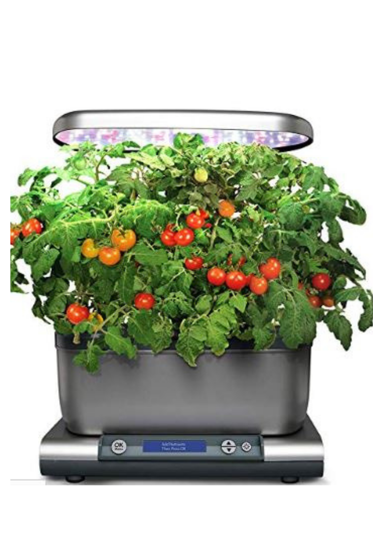 The Easiest Way To Grow Fresh Herbs And Vegetables All 400 x 300