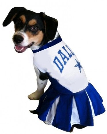DoggieNation - Dallas Cowboys Cheerleader Dog Dress eac59df48