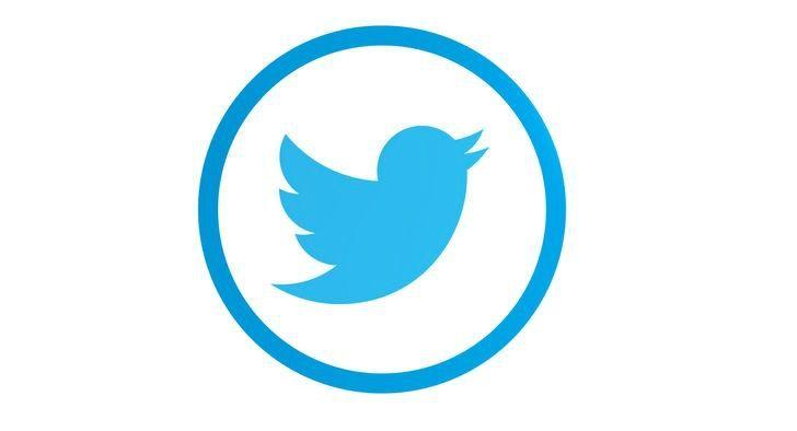 logo twitter redondo