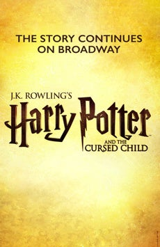 Harry Potter And The Cursed Child Cursed Child Potter Harry Potter
