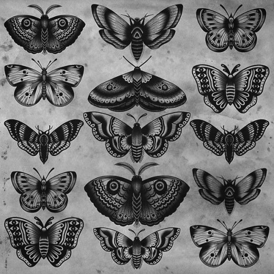 Electric Tattoos Tom Gilmour Traditional Butterfly Tattoo Moth Tattoo Butterfly Tattoo