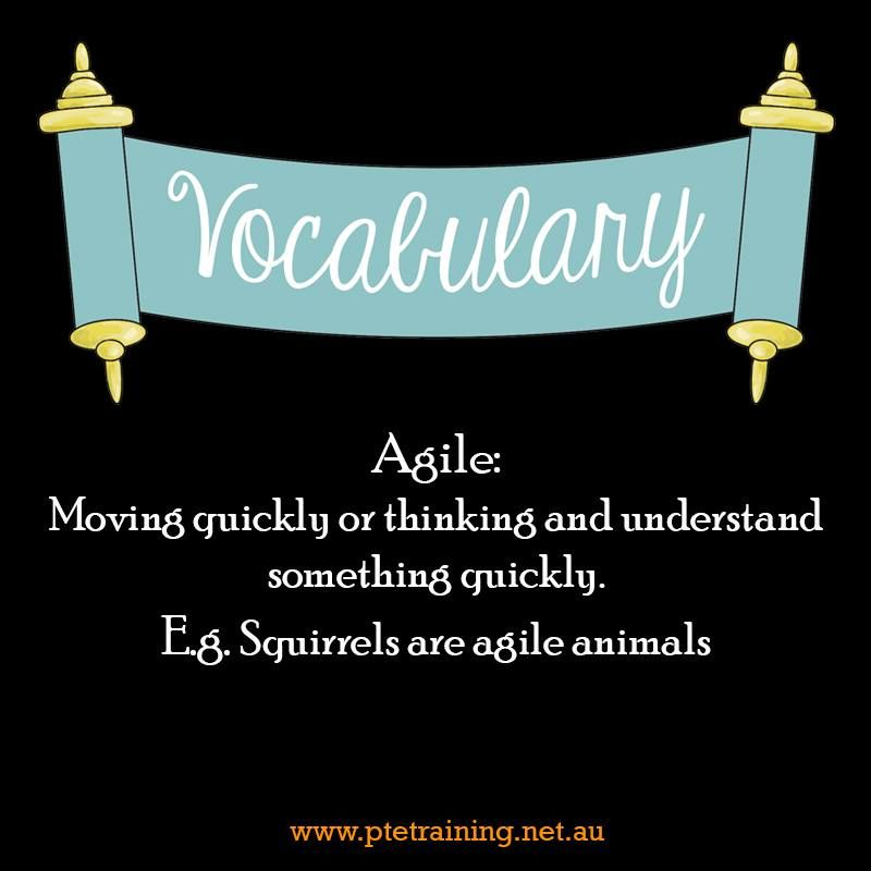 Agile Example Ruth Was As A Monkey Synonyms Nimble Lithe