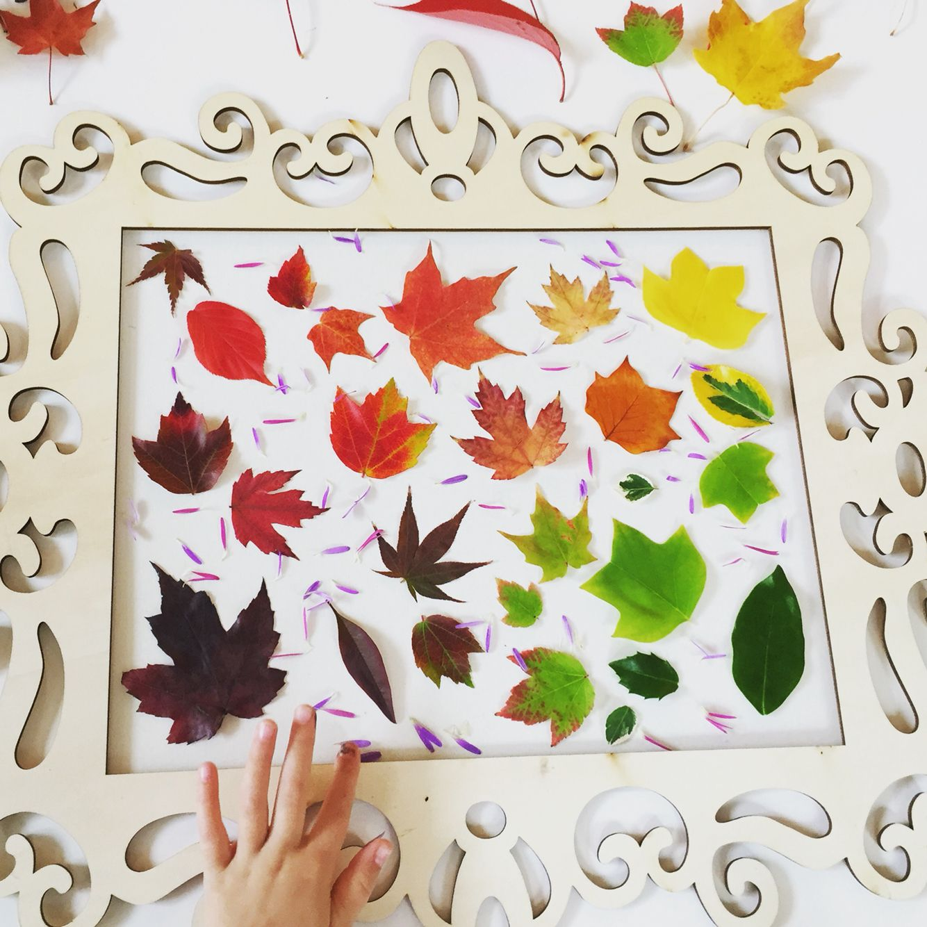 Fall window art. -wood frame from Michaels -clear contact paper ...