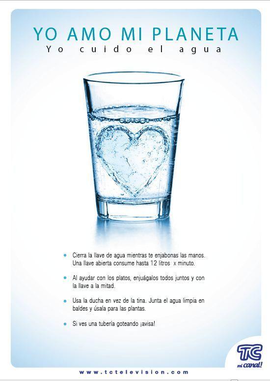 Dia Mundial Del Cuidado Del Agua Rse Cuidado Del Agua Dia Mundial Del Agua Ahorro De Agua