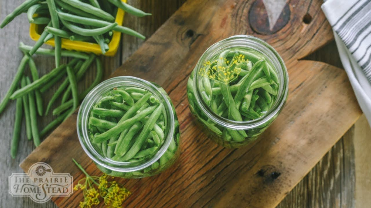 How to Ferment Green Beans Pickled green bean recipes
