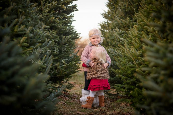 Kansas City Christmas Tree Farm Family Photo Session Ashley Spaulding Photography Family Photo Sessions Christmas Tree Farm Photos Photo Sessions