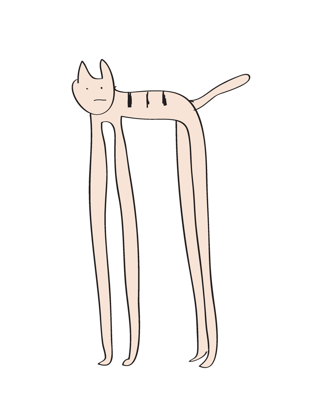 スタイルのいいネコ