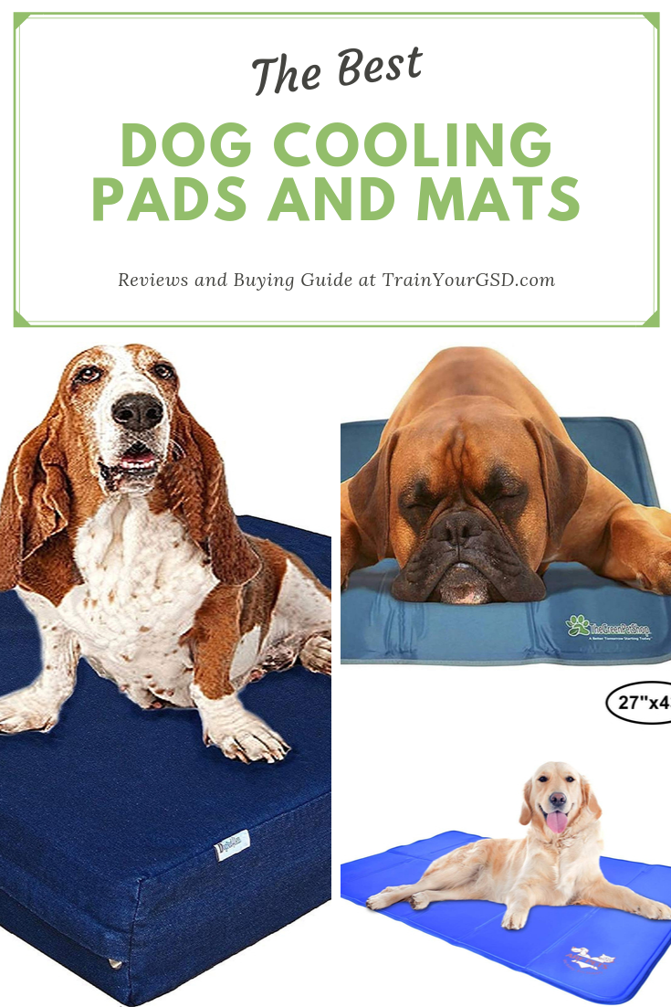 Best Dog Cooling Pads And Mats Of 2020 Top 10 Reviews Best Dogs Cute Dog Collars Dog Supplies
