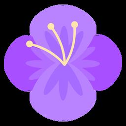 Four Petal Flower Purple Flat Petal Purple Flats Purple