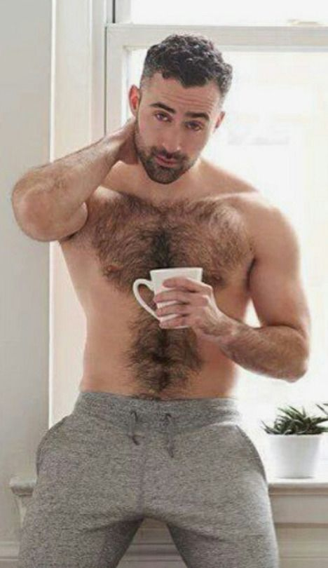 gay hairy gay hunk