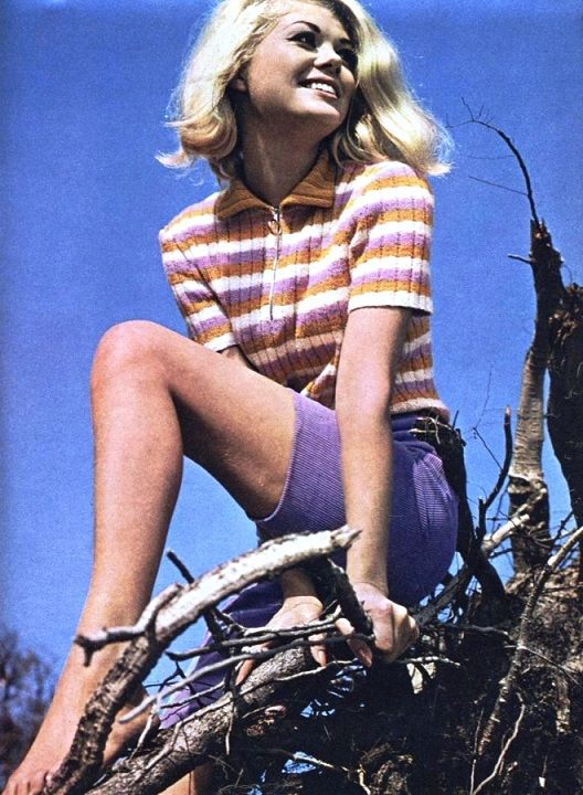 Modische Maschen (DDR-Modemagazine) nr. 1 1968 Photo ...