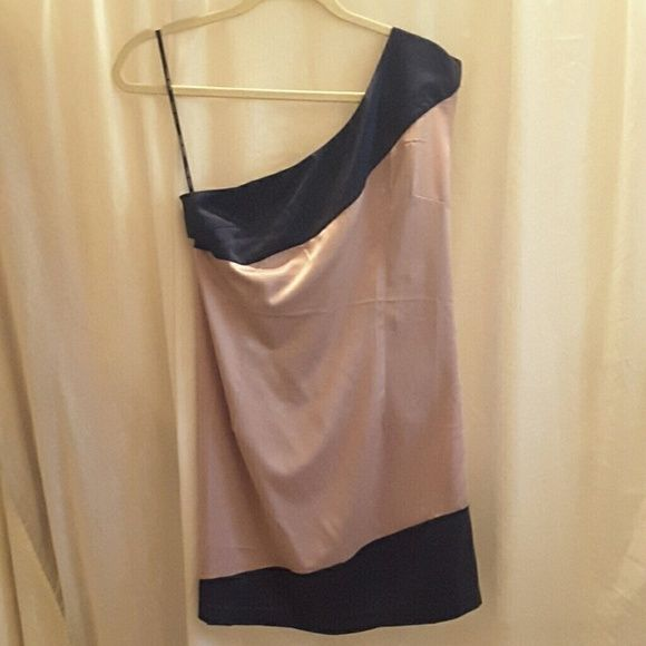 Naked Zebra color block dress Like new, Naked Zebra, size L, antique rose and Dark blue (picture does color no justice), one shouldered, 97% polyester 3% spandex, zipper on left side dress Naked Zebra Dresses One Shoulder
