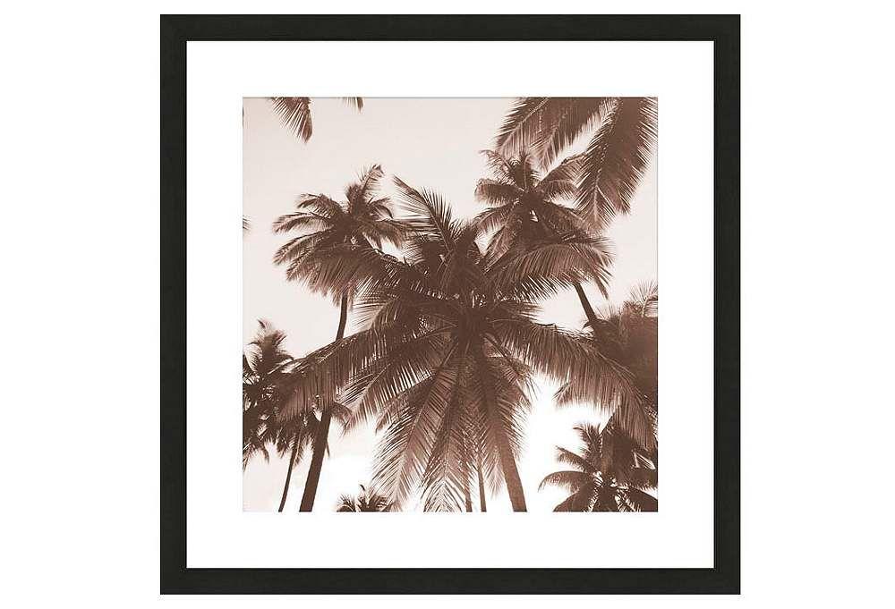 Michael Kahn, Island Palms