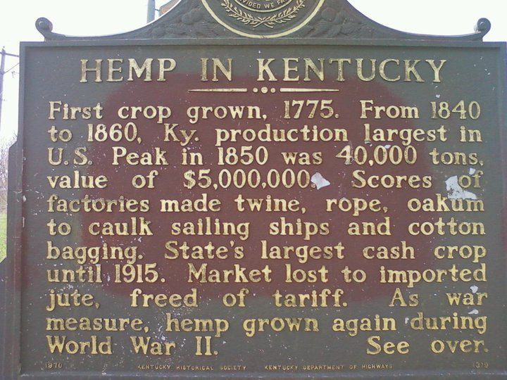 Image result for growing hemp in kentucky