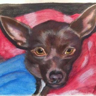 """""""Kona"""" watercolor on paper. By Julie Murphy"""
