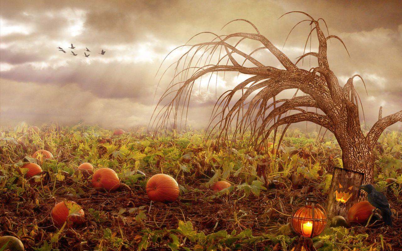 Must see Wallpaper Halloween Windows 10 - 942d24f0f4dc47c54cafa7f2cb710eb8  Trends_779843.jpg