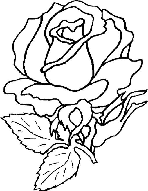 Formed Beautiful Flower Coloring Page Malvorlagen Blumen Vorlage Blumenmalvorlagen