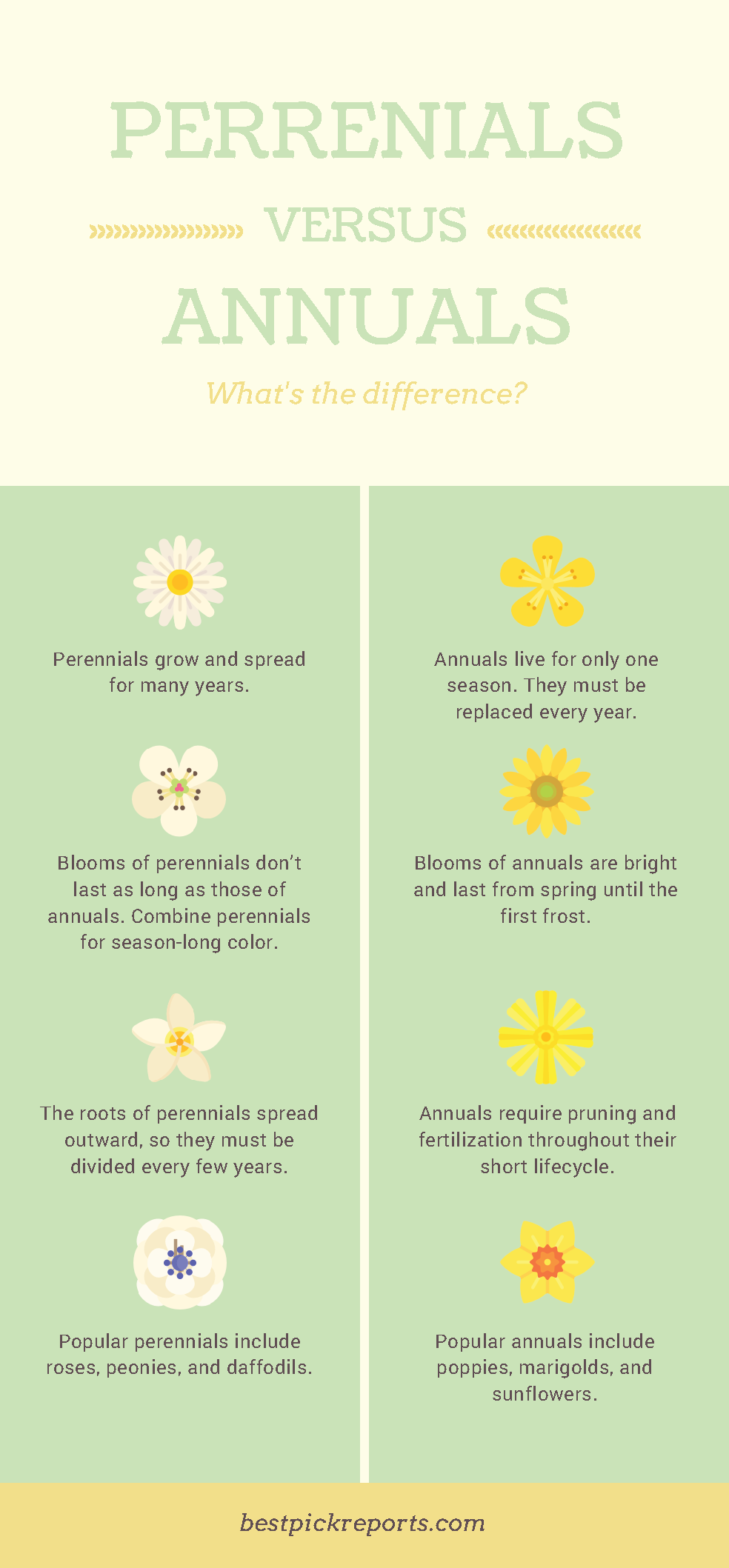 Know the differences between perennials and annuals garden if youve always wanted to know the difference between annual and perennial plants keep reading for our quick guide izmirmasajfo